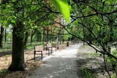 2020_05_17_parki_zielen_glazja_020
