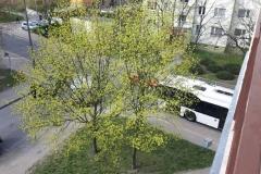 fot. nadesłane