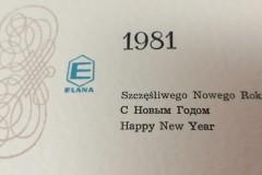 Życzenia noworoczne, Elana Toruń.